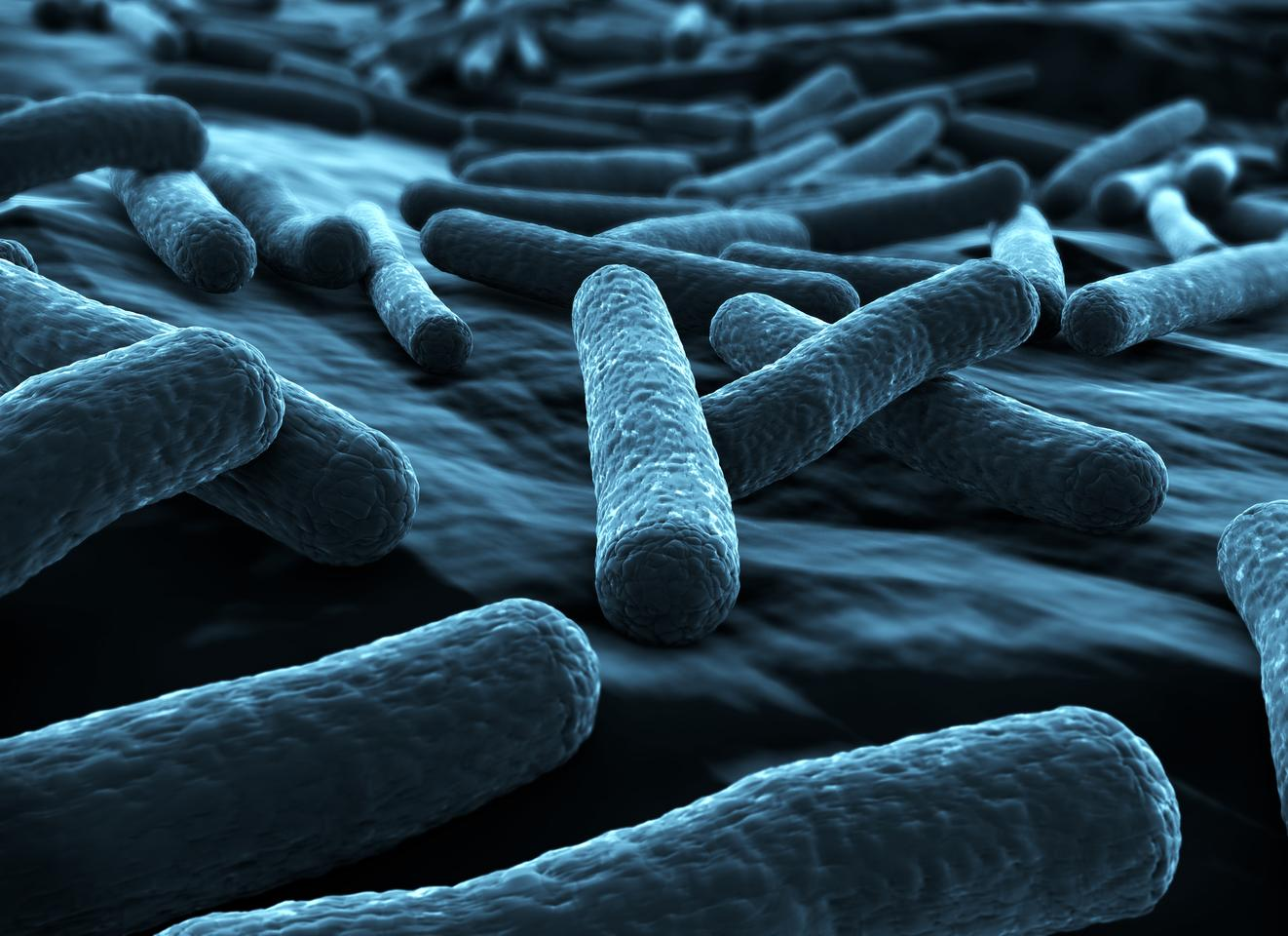 E. coli are reportedly no match for Corning's antimicrobial glass (Image: Shutterstock)