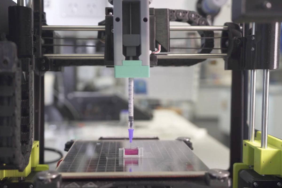 A 3D printer is used to extrude the bio-ink (magenta) into a receptacle simulating a bone cavity