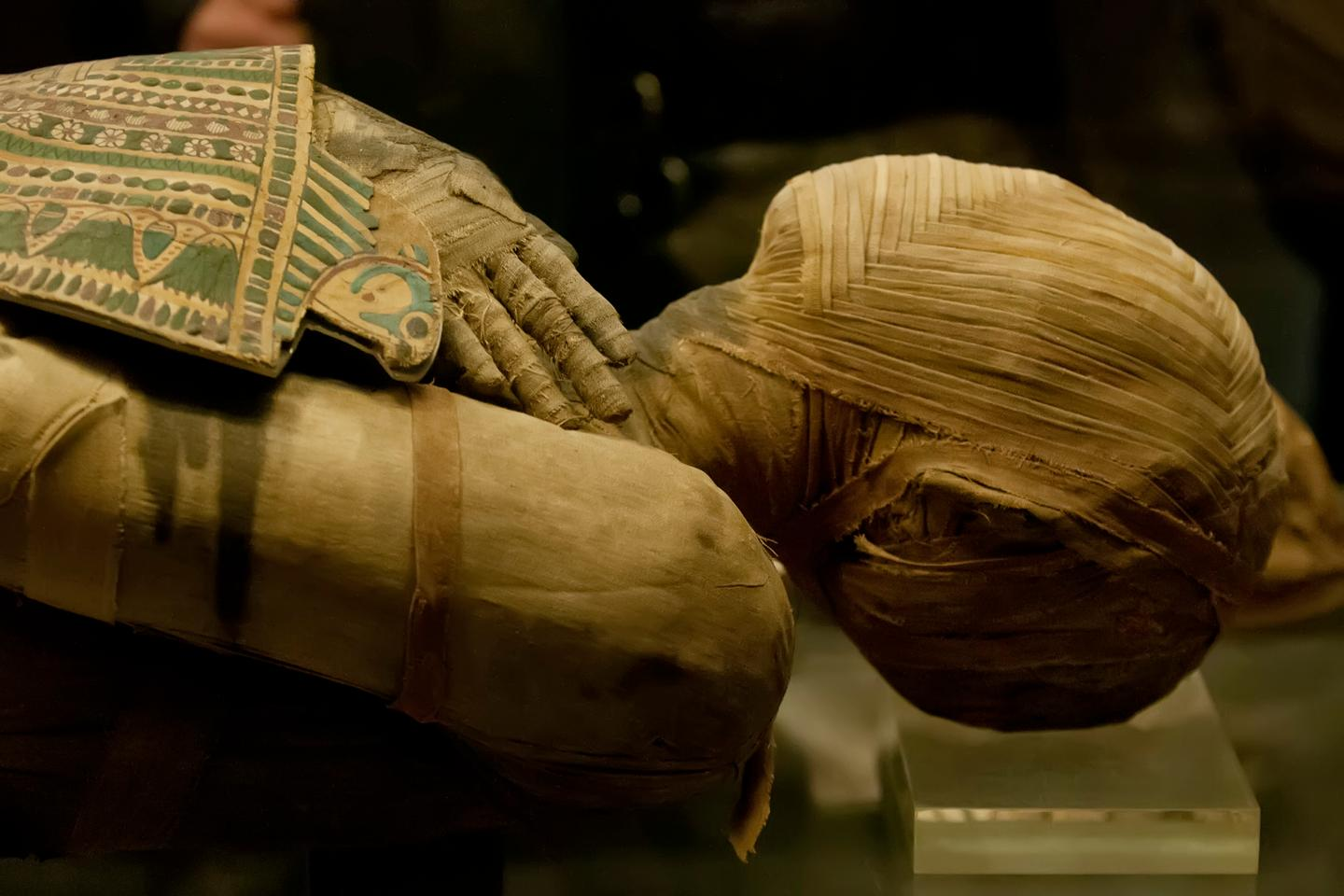 A recently discovered text written around 1450 BCE contains previously unknown details about Egyptian mummification process