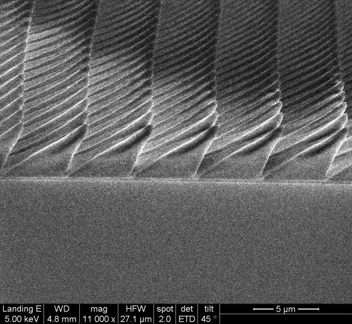 A scanning electron microscope image of the 3D-nanoprinted microstructures