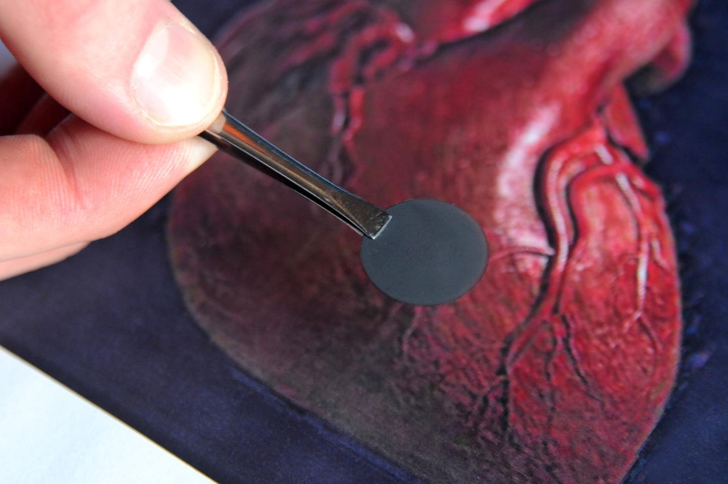 A newly-created carbon nanofiber patch could be used to regenerate heart cells, killed by heart attacks (Photo: Frank Mullin/Brown University)