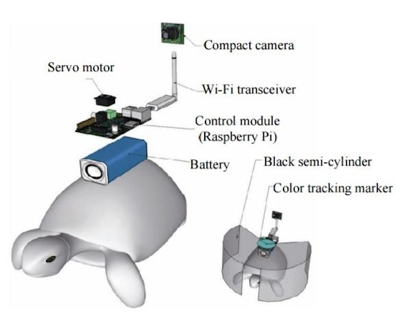The system mounted on the turtle's back receives directions from a human controller wired into a brain-computer interface