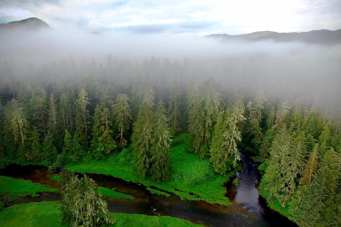 Theteam observed15 former habitation sites in the Hakai Lúxvbálís Conservancy, a protectedmarine park on the coast of Canada