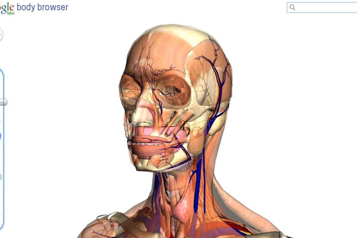 Google Labs has revealed an interesting example of HTML5 and WebGL technology in the Body Browser, an interactive 3D journey through and around the human body