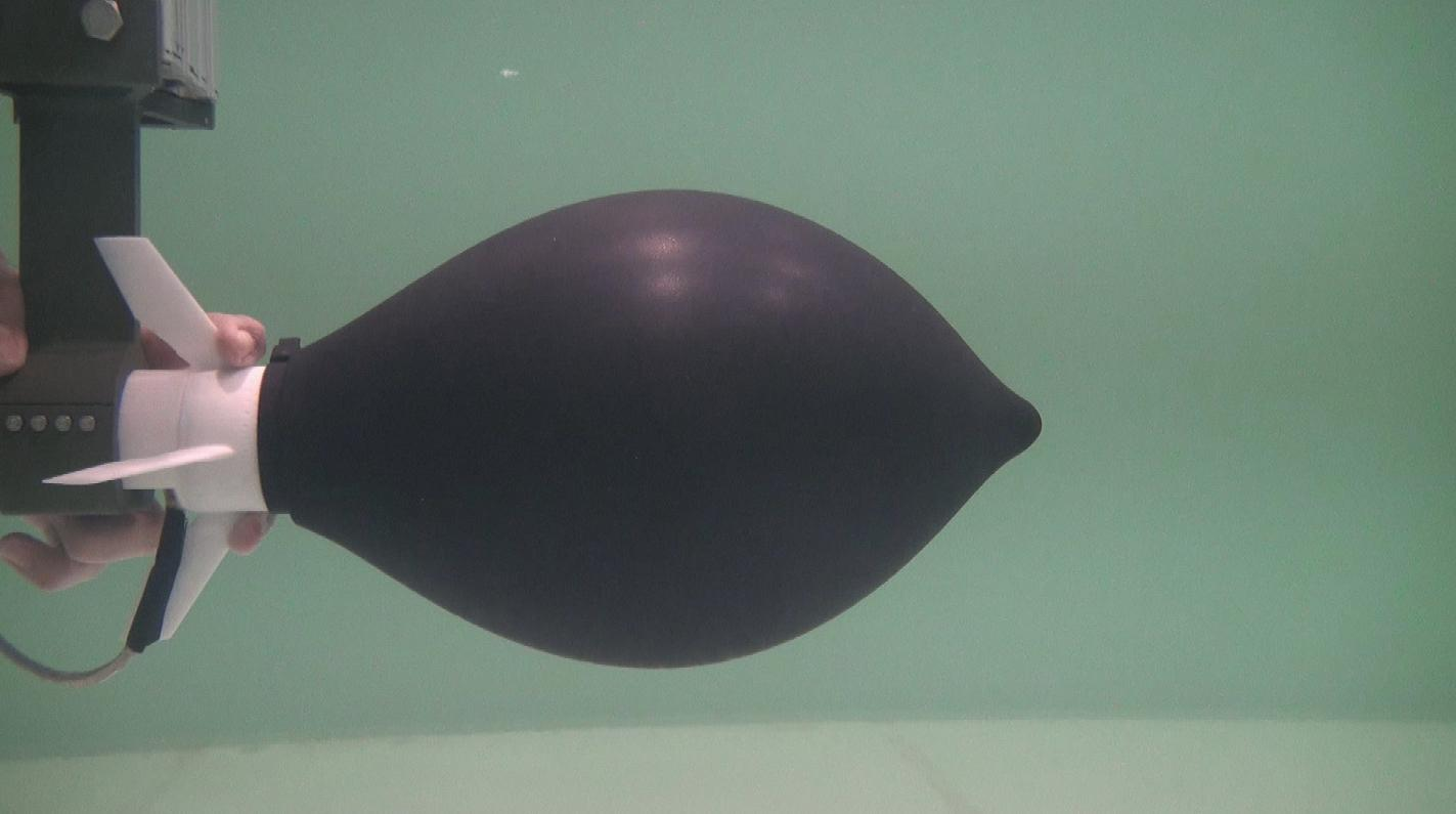 The octopus-inspired device, inflated and ready to go