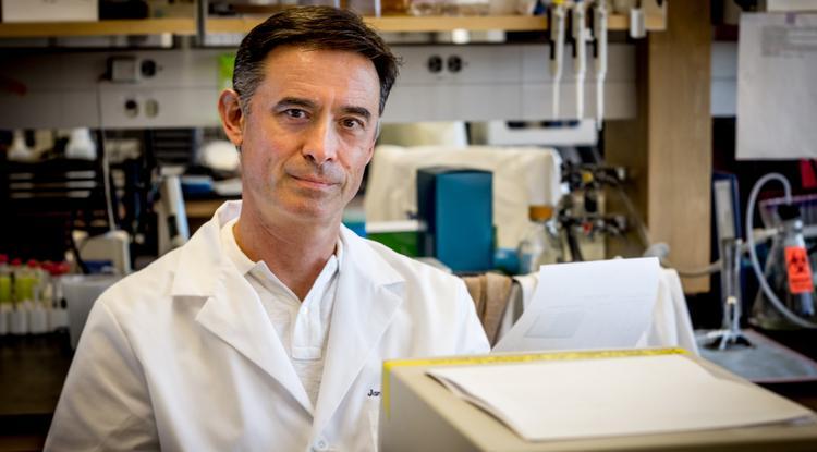 Janko Nikolich-Zugich, co-author of the study