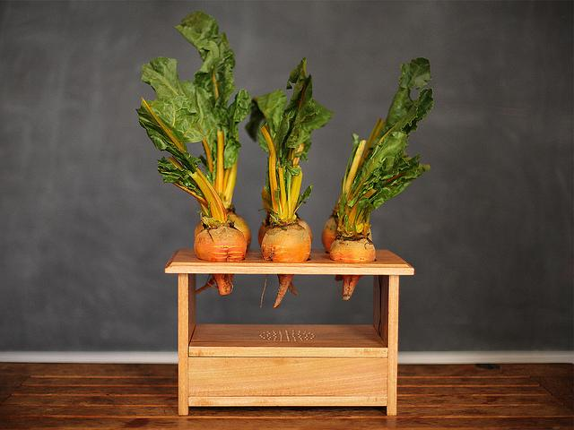 BeetBox as a finished musical instrument, with root vegetables you can touch to play (Photo: Scott Garner)