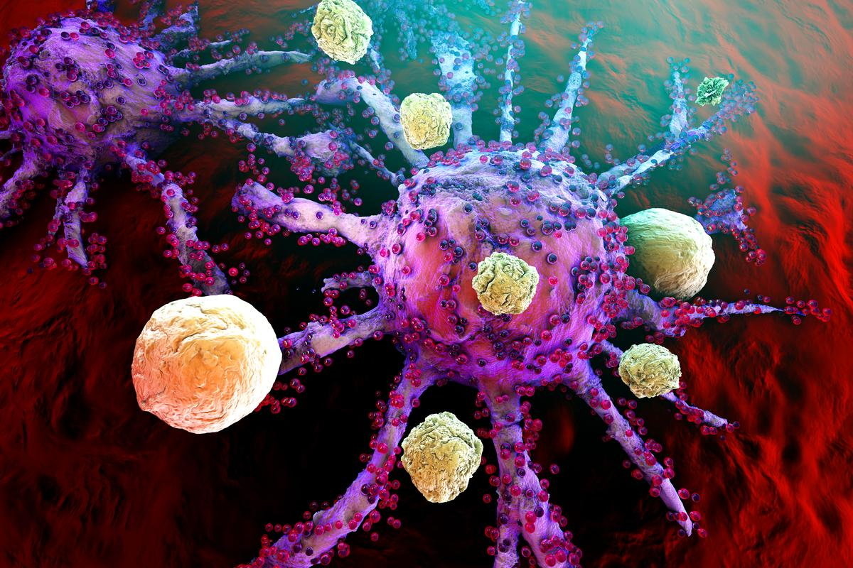 Render of T cells taking on cancer cells – new research has revealed how a healthy microbiome could help them gain the upper hand