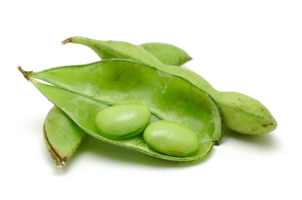 Scientists have demonstrated that a natural cancer drug can be obtained by soaking soybeans in water (Photo via Shutterstock)