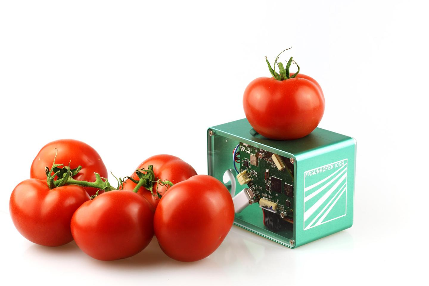 A pocket scanner under development at Fraunhofer relies infrared light to determine the freshness of food