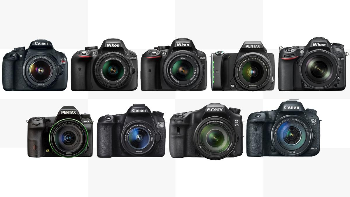 Gizmag compares the specifications and features of some of the best entry-level to enthusiast DSLRs available in 2014