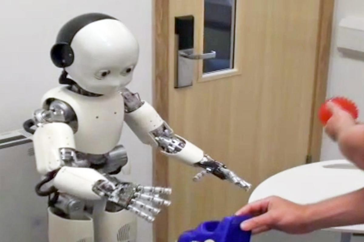 A robot being taught to distinguish between two objects (Photo: University of Plymouth)