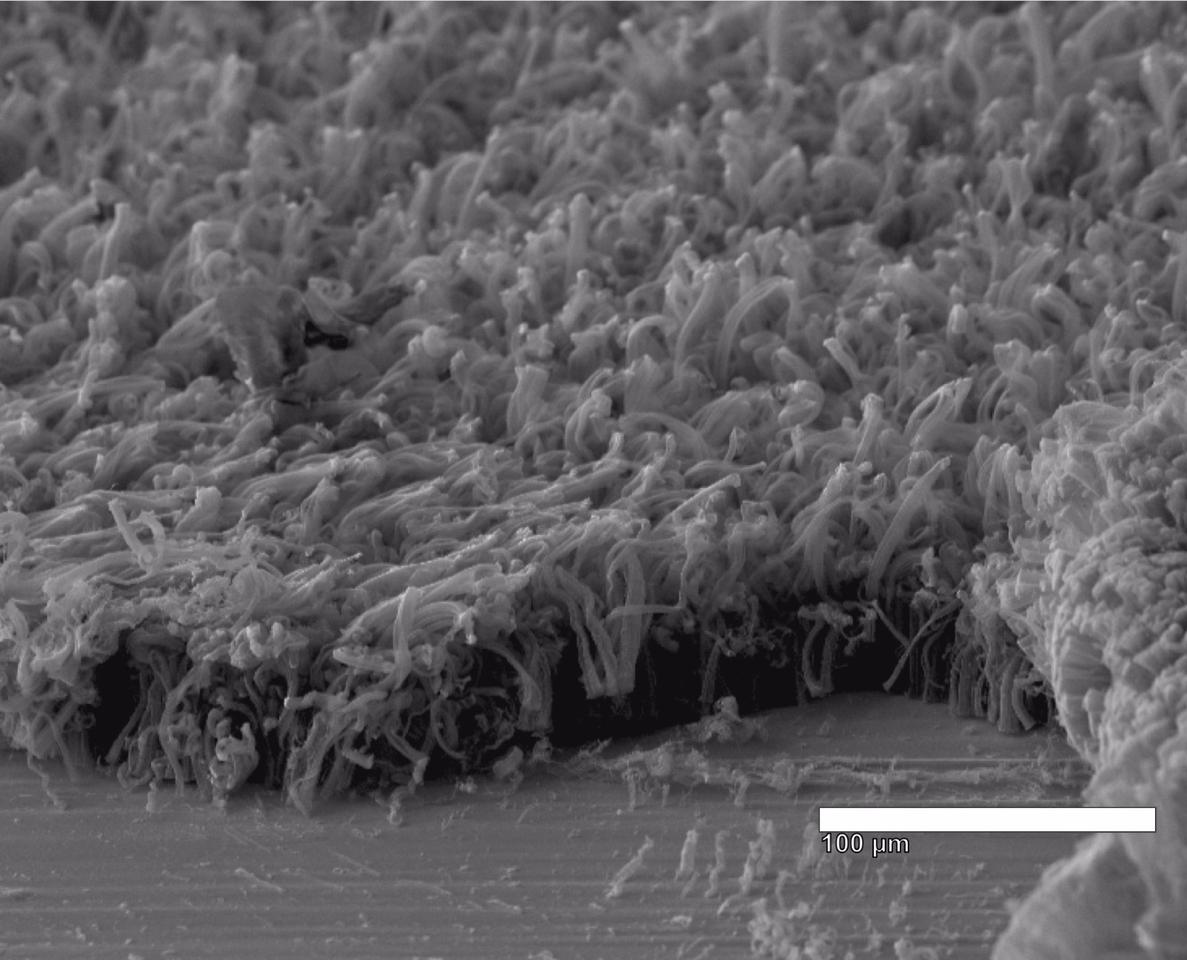 Due to the low density and high surface area of the nanotube forest, the lithium metal is able to coat the carbon nanotube evenly when charged