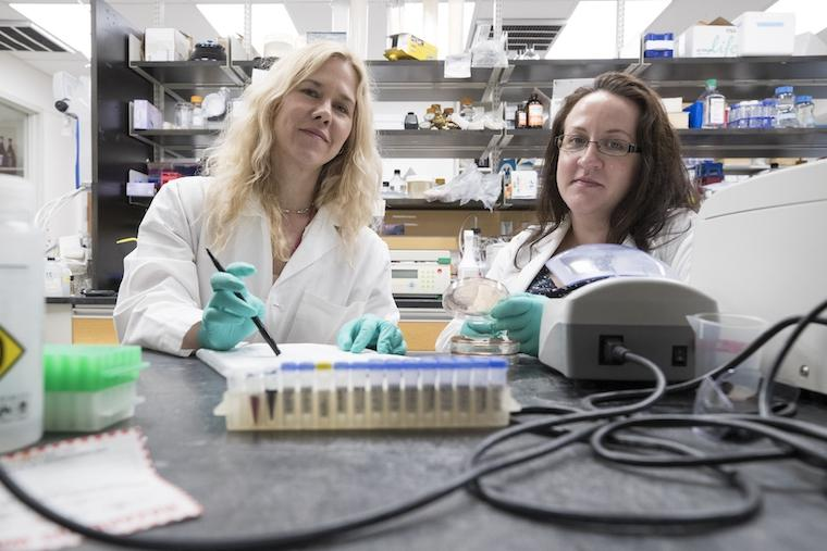 Researchers on the study,Melissa Kendall (left) and ElizabethMelson
