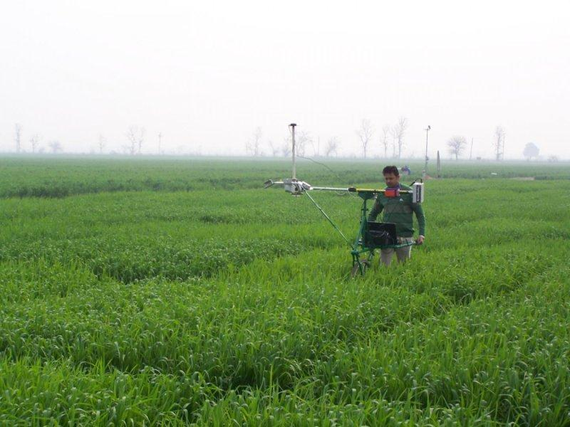 The Phenocart can be fitted with different sensors, depending on the data that farmers might need to gather