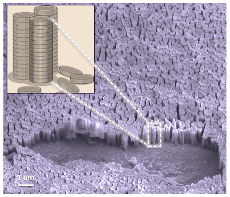 Vertical nanopillars are ideal geometries for getting around the challenges of producing polymer architecture to boost power-conversion efficiency of light to electricity to power electronic devices (Image: UMass Amherst)