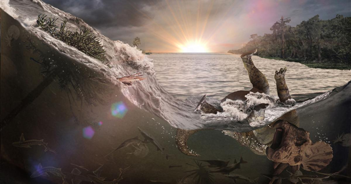 Fossil site is first ever to show deaths from mass extinction asteroid impact