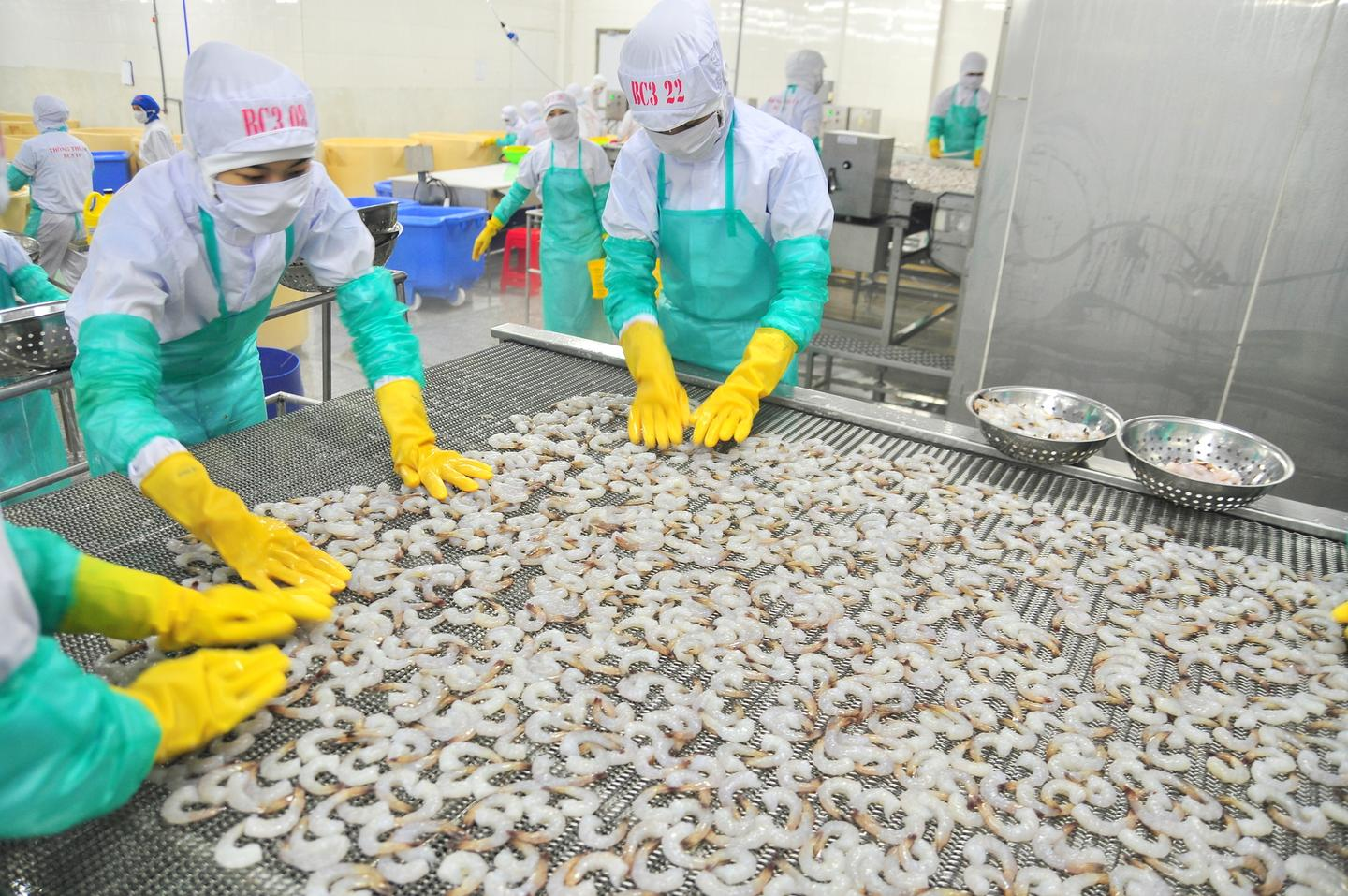 In the seafood industry, much of the protein left over after processing shrimp just goes to waste