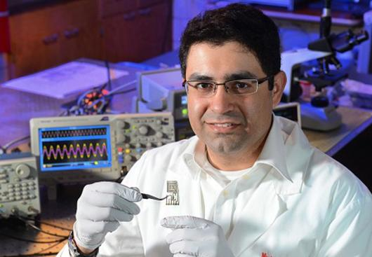Researchers from Iowa State University are the latest to shift their focus to the area of transient electronics