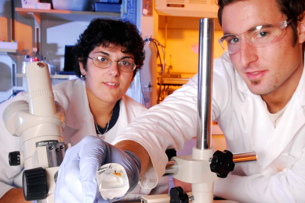 Georgia Tech research technician Kellie Templeman (left) and former graduate student Tim Petrie display a piece of titanium coated with the bio-inspired polymer (Image: Gary Meek)