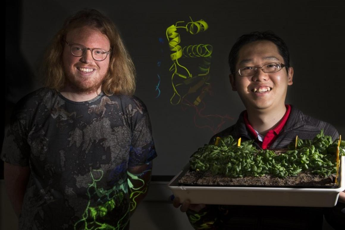Dr. Peter Mabbitt, left, and Dr. Kai Xun Chan, right, of Australian National University are two of the researchers behind the new study