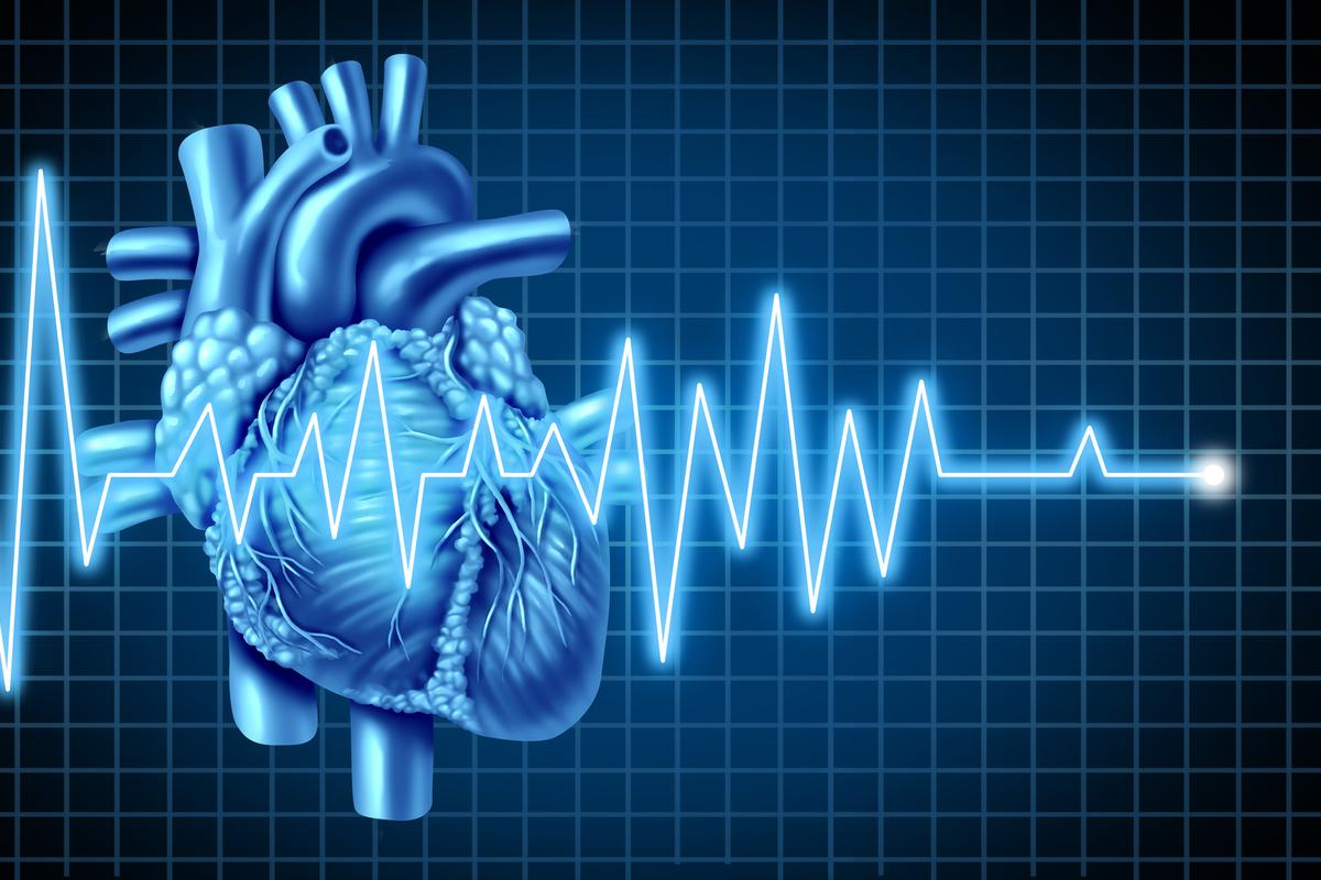 Researchers have identified three proteins that play a role in enabling heart cells to replenish themselves again