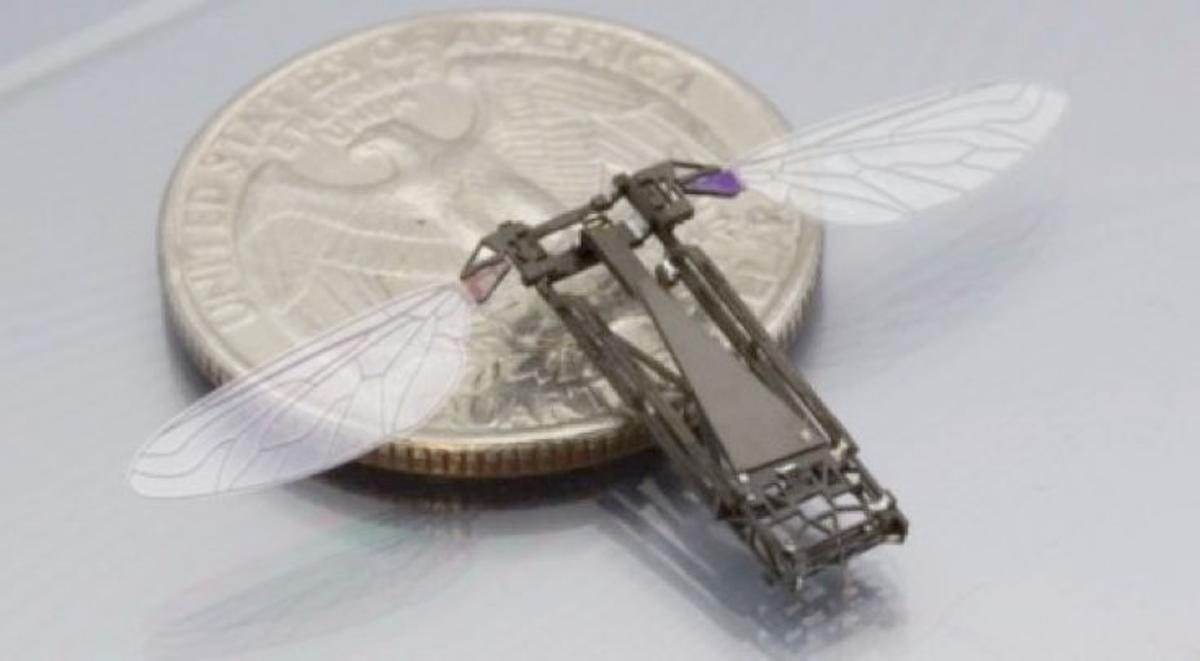 Harvard researchers are developing a feedback controller that should allow the Robobee to hover and perform controlled flight