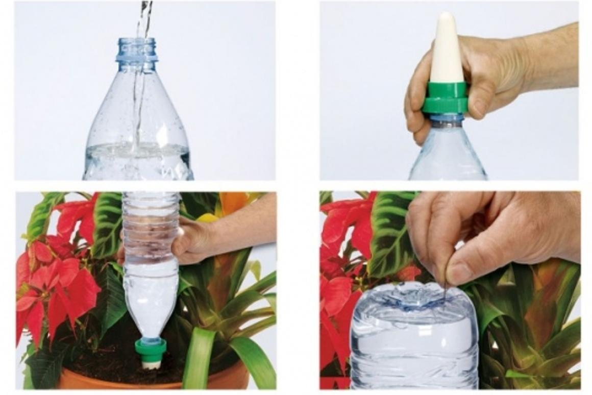 Aquasolo watering system