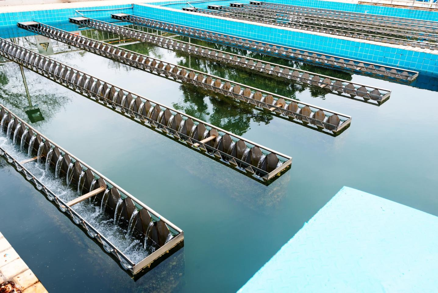 The discharge from coastal wastewater treatment plants could make them energy self-sufficient