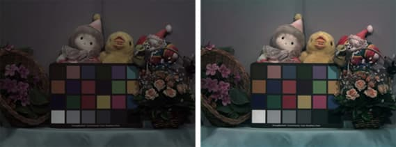 The image on the left was taken using a color filter, while the one on the right used a Micro Color Splitter