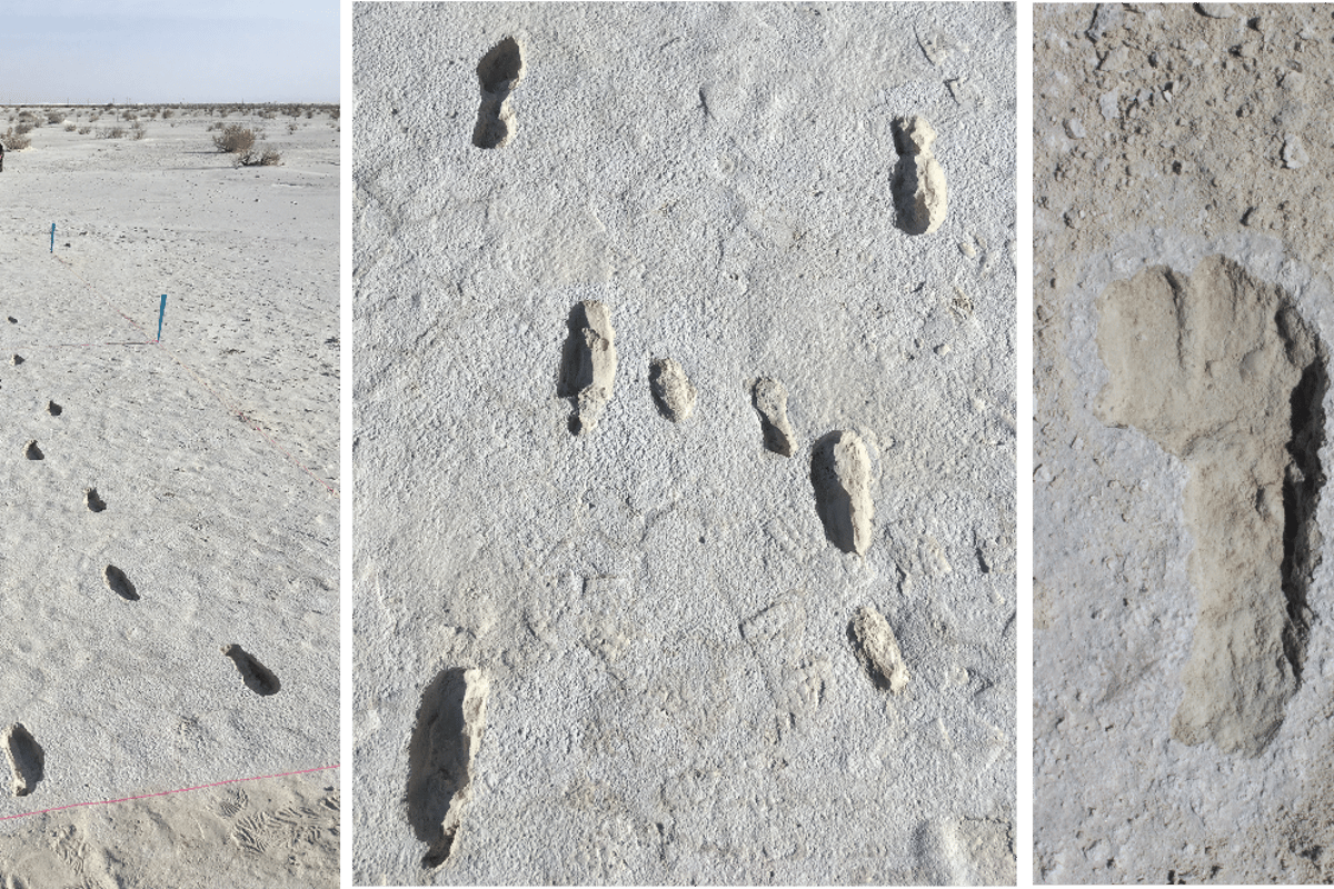 Left: A section of the footprint trail showing the outward and return journeys, side by side. Center: The adult and child footprints visible together. Right: A print showing signs of the person slipping a little