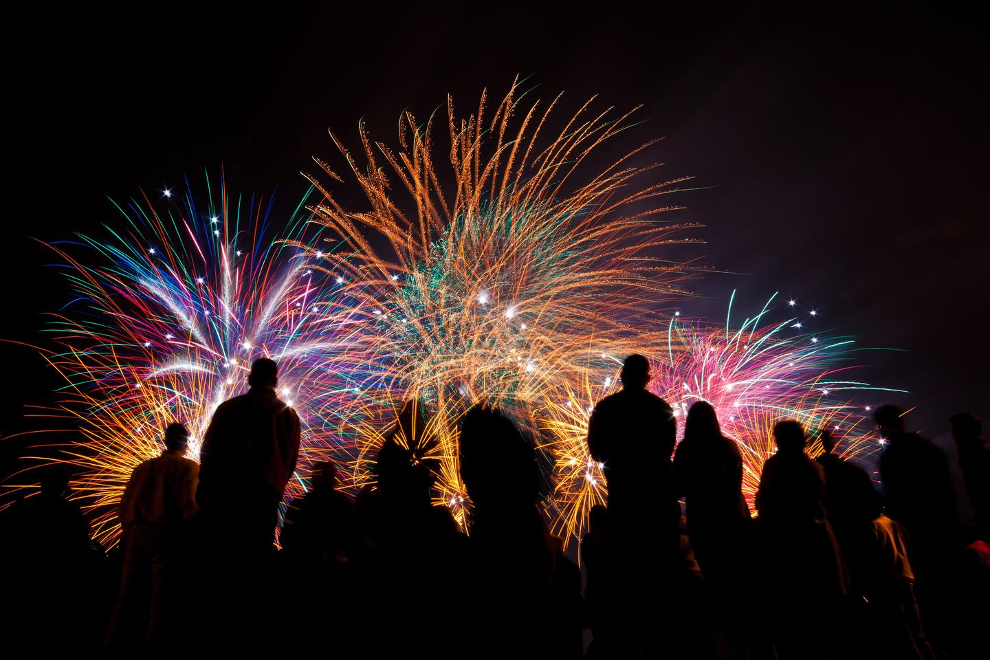 A new study has found pollution from fireworks may damage the health of humans and animals