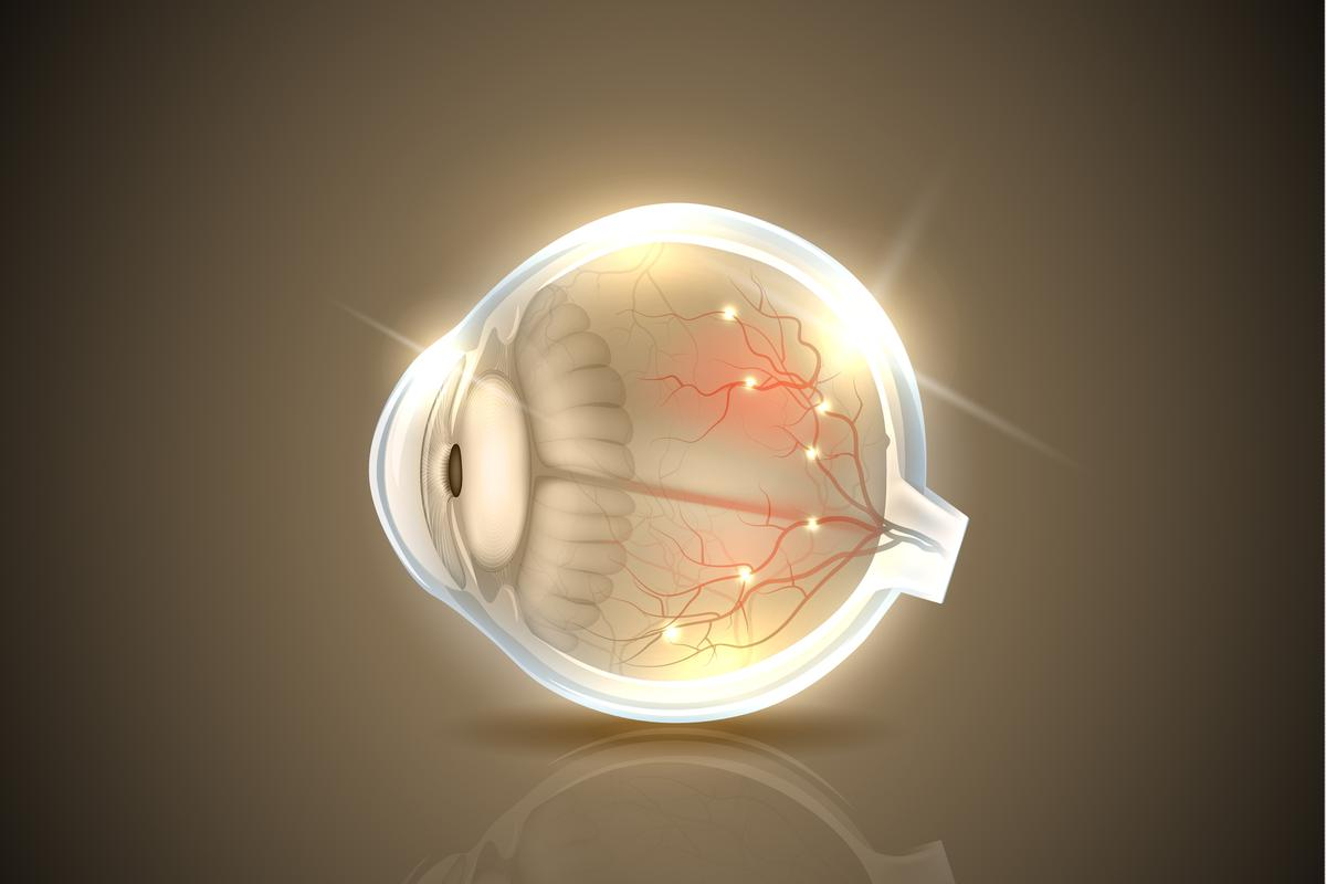 By combining two types of healthy cells into the one injection treatment, a team of scientists may have found a new way to tackle vision impairment