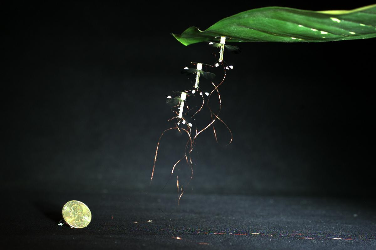 The RoboBee can now stick to almost any surface during flight to save energy