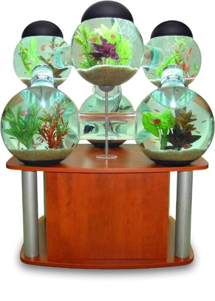 Create a fantastic fishy world with the Labyrinth aquarium