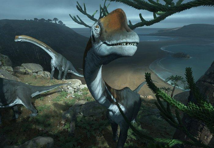 The scientists say the newly identified dinosaur, Vouivria,  died at a young age weighing around 15,000 kg (33,000 lb)