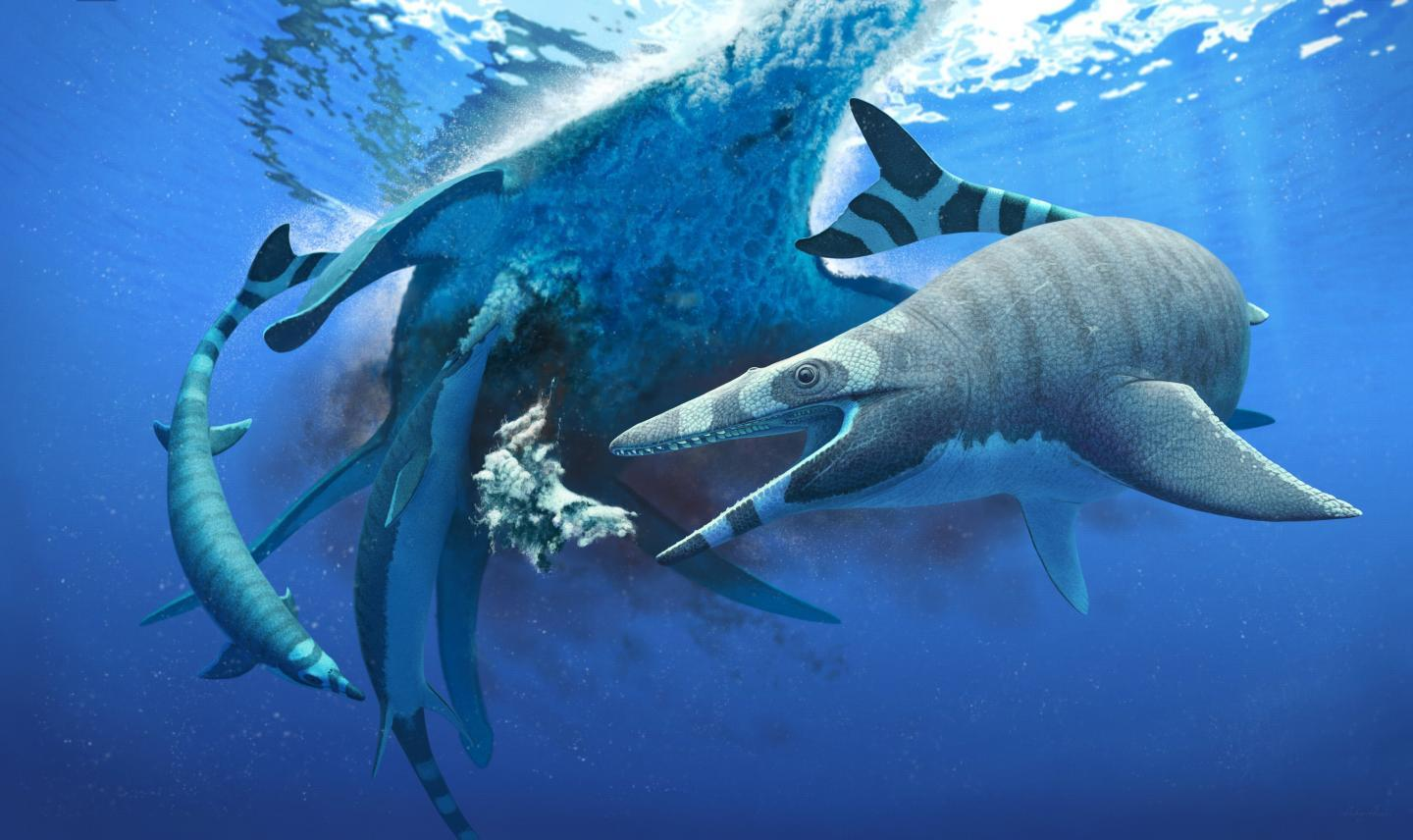 Xenodens calminechari, pictured feeding on the carcass of a larger marine reptile