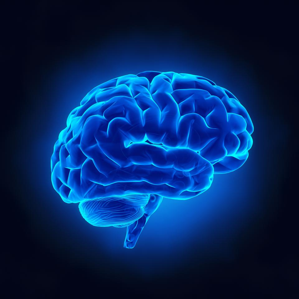Ultrasound may be a way to not just tackle brain plaques associated with Alzheimer's, but also age-related cognitive decline in the broader population