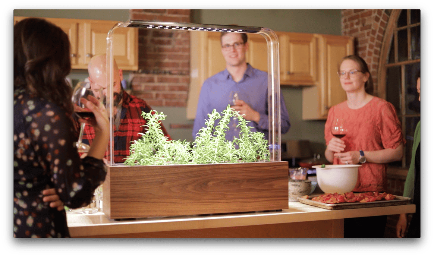 The Herb Garden is a smart and stylish indoor planter that makes growing your own herbs and vegetables easy
