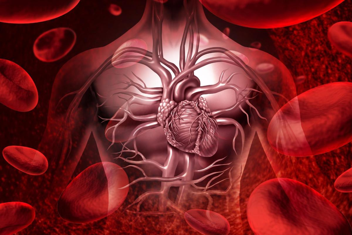 The course of blood through the heart might be a critical indicator of stroke risk