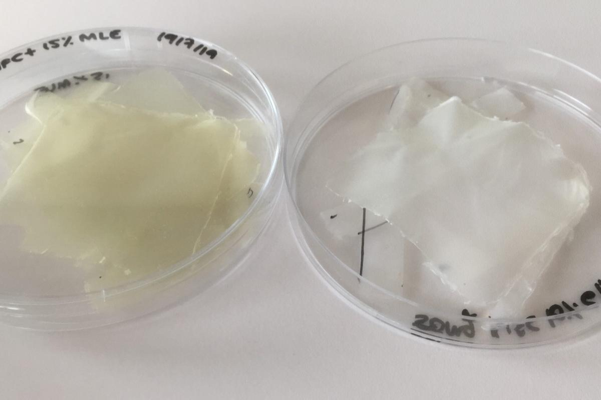 Samples of bioplastic developed by scientists in Spain and Portugal