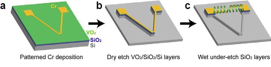 The team, working with a silicone substrate, formed a V-shaped ribbon comprising chromium and vanadium dioxide, which formed a coil when released from the substrate (Image: Berkeley Lab)