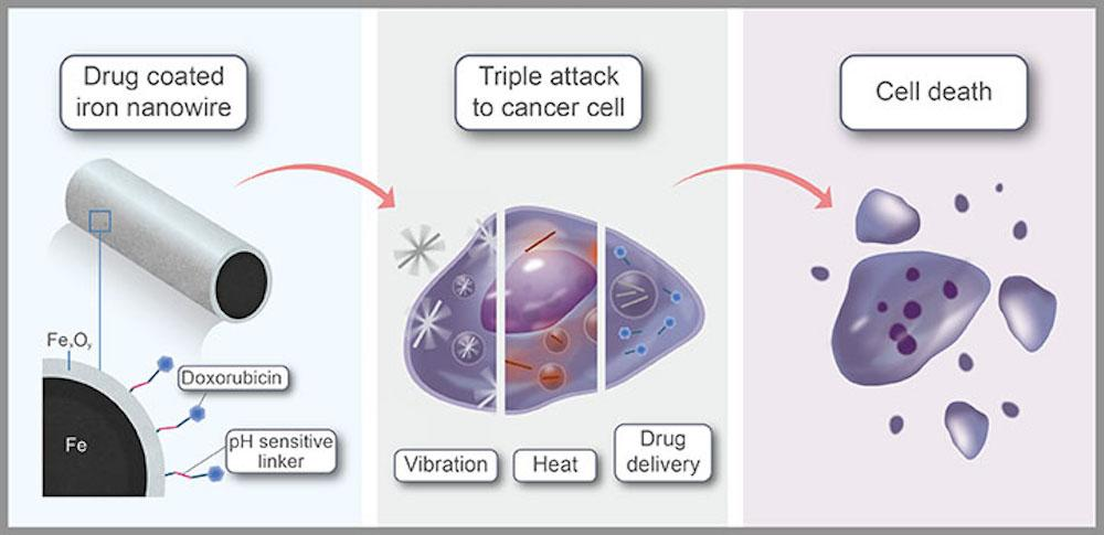 A diagram explaining how the iron nanowires work to kill cancer cells