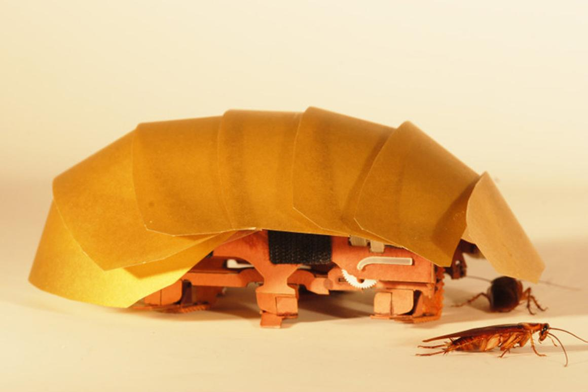 CRAM, the cockroach-inspired robot that can keep moving even when squished to half its size