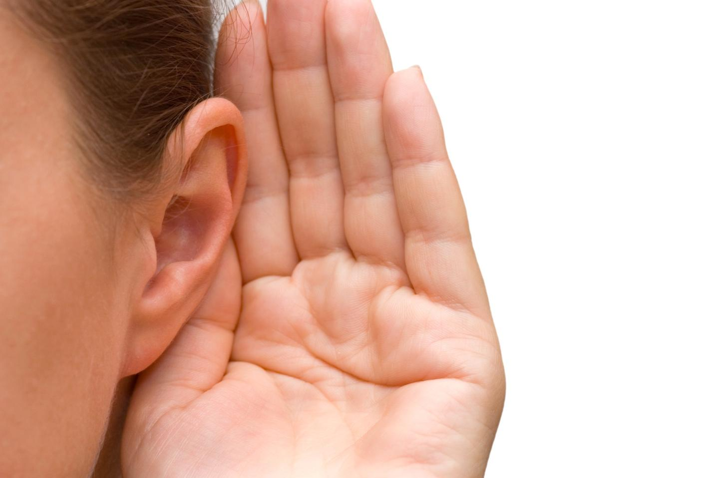 Scientists can now regrow the inner ear cells that convert sound waves to nerve signals