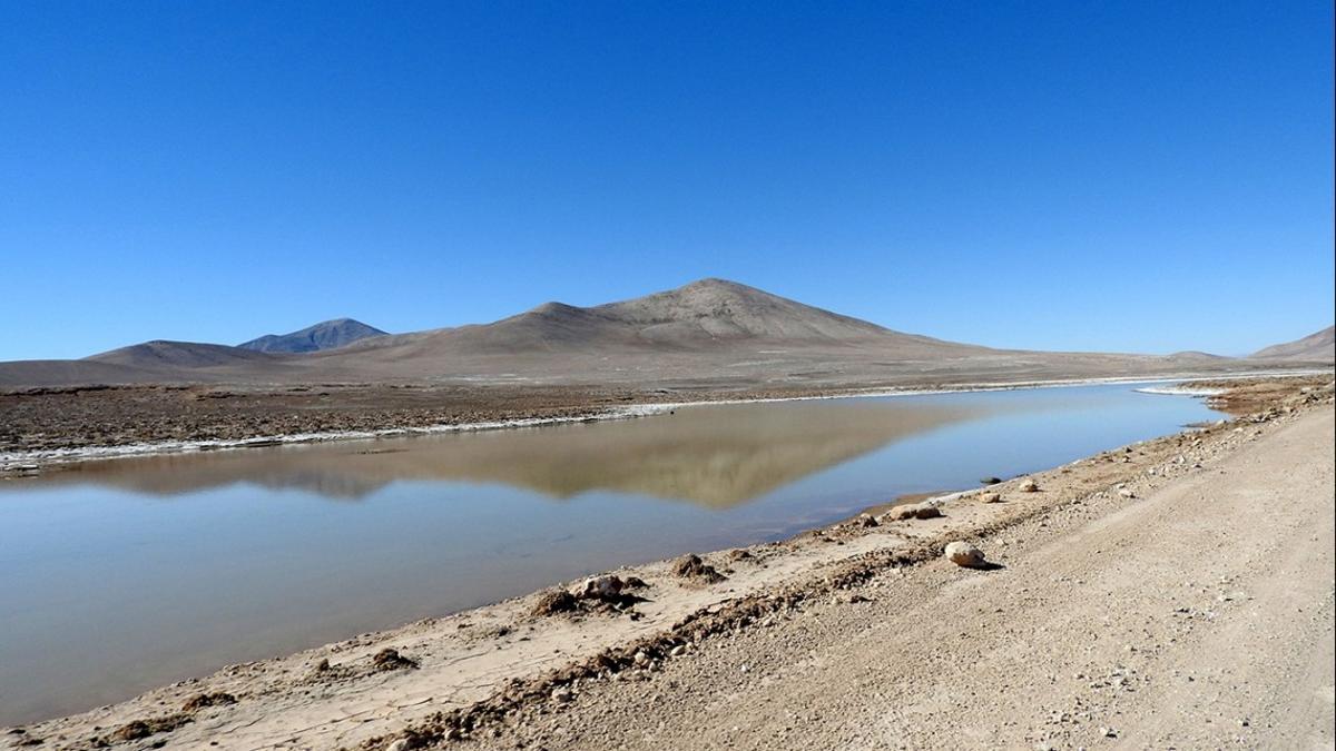 A small, ephemeral lagoon in the hyperarid core of the Atacama Desert