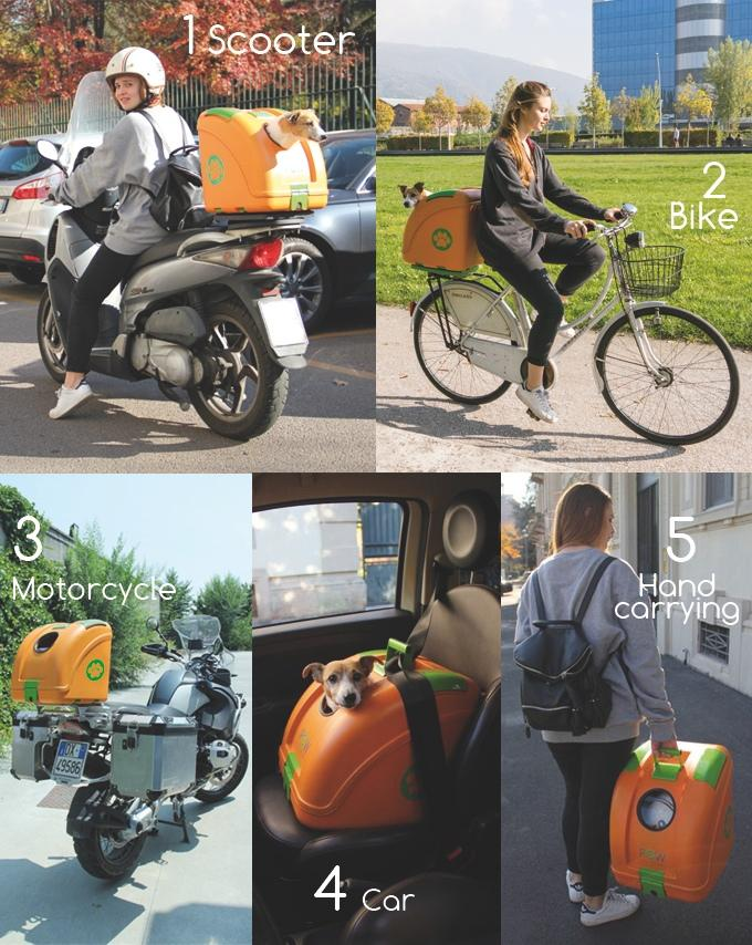 Pet On Wheels makes carrying a pet on two wheels safe and