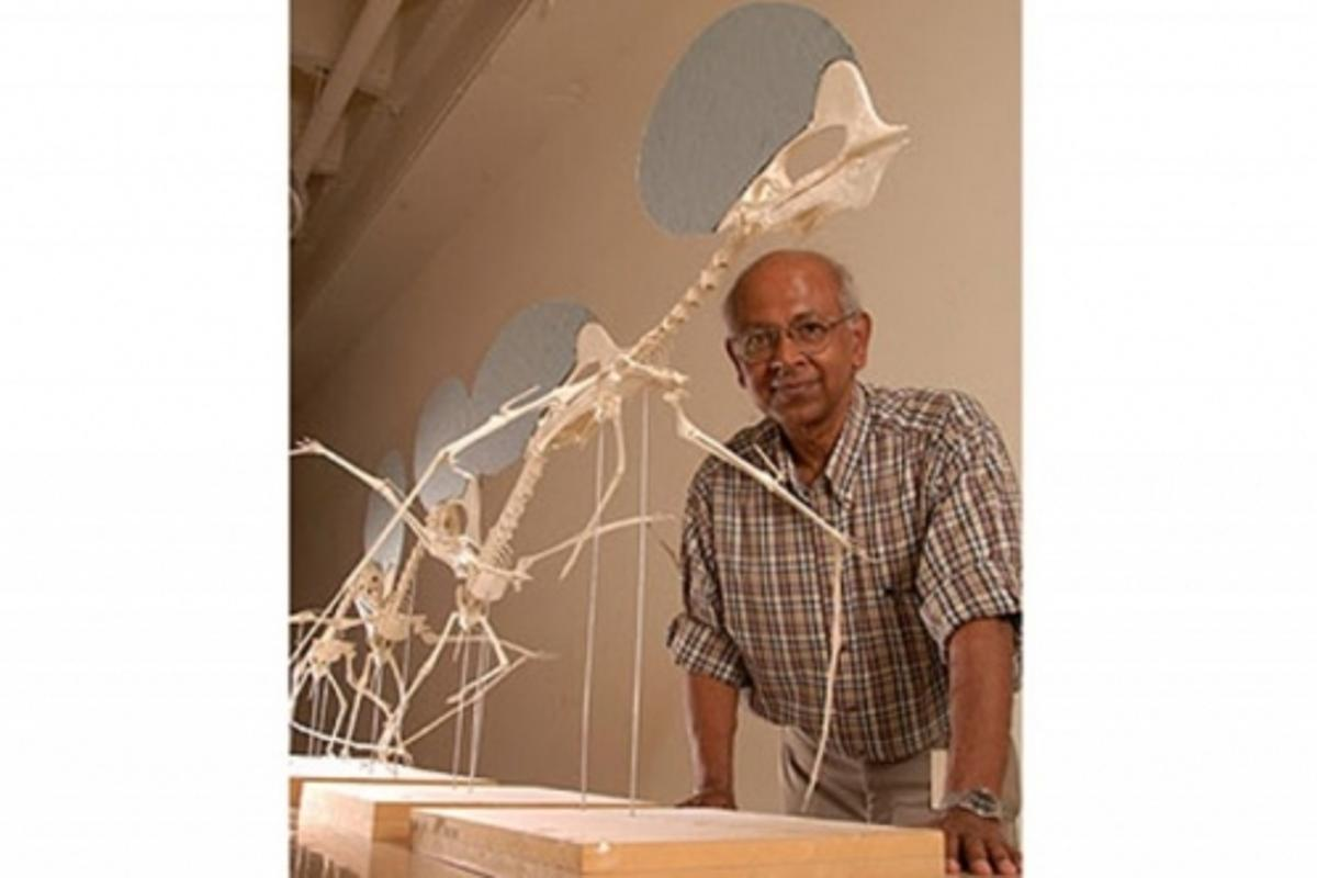 Texas Tech University paleontologist Sankar ChaterjeeImage: Texas Tech University (http://today.ttu.edu/)