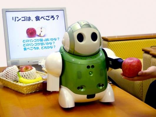 The Health Food Advisor Robot of 2005