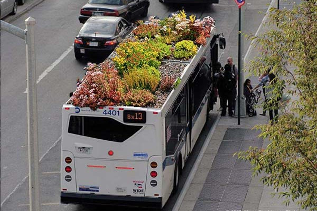 Digital mockup of a bus-top garden (Image: Marco Castro Cosio)